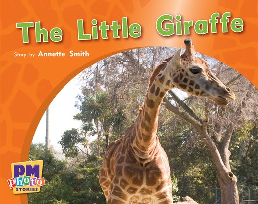 PM Red: The Little Giraffe (PM Photo Stories) Level 3 x 6