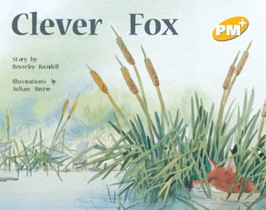 Clever Fox (PM Plus) Level 6