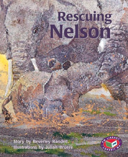 Rescuing Nelson (PM Storybooks) Level 17, 18