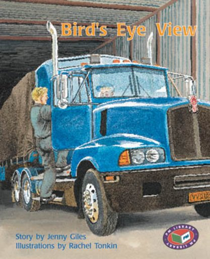 Bird's Eye View (PM Storybooks) Levels 17, 18