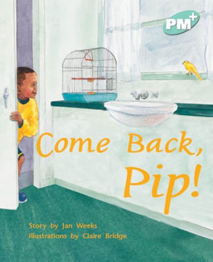 Come Back, Pip! (PM Plus Storybooks) Level 17