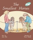 The Smallest Horses (PM Plus Storybooks) Level 17