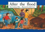 PM Green: After the Flood (PM Storybooks) Level 14 x 6
