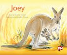 PM Green: Joey (PM Storybooks) Level 14 x 6