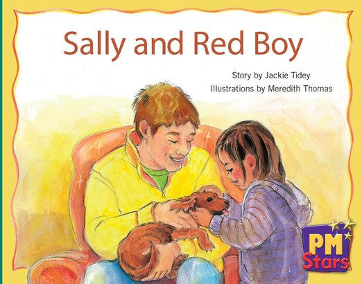 PM Green: Sally and Red Boy (PM Stars) Level 12 x 6