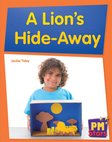 PM Blue: A Lion's Hide-Away (PM Stars) Levels 11, 12 x 6