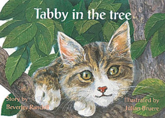 Tabby in the Tree (PM Storybooks) Level 10
