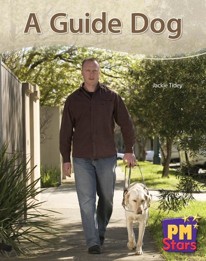 PM Blue: A Guide Dog (PM Stars) Levels 9, 10, 11, 12