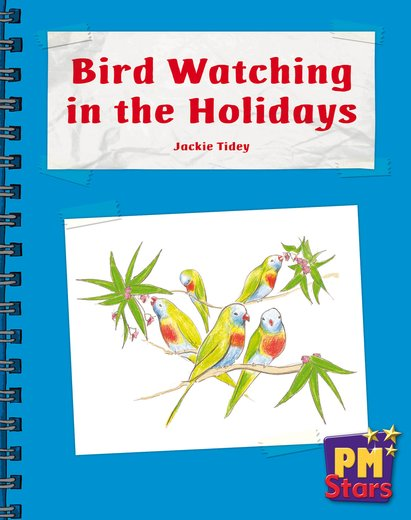 Bird Watching in the Holidays (PM Stars) Levels 9, 10, 11, 12
