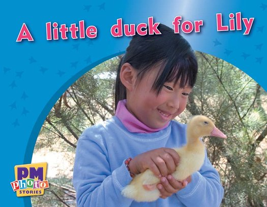 PM Magenta: A Little Duck for Lilly (PM Photo Stories) Levels 2, 3 x 6