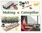 PM Yellow: Making a Caterpillar (PM Plus Non-fiction) Levels 8, 9 x 6