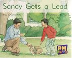 Sandy Gets a Lead (PM Gems) Levels 6, 7, 8