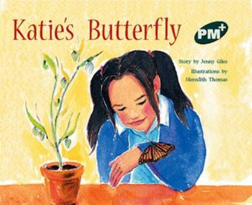 Katie's Butterfly (PM Plus Storybooks) Level 14
