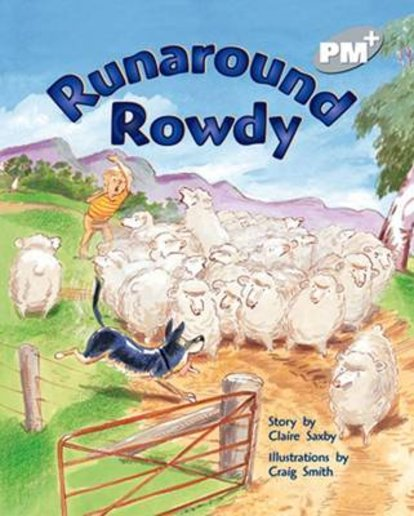 Runaround Rowdy (PM Plus Storybooks) Level 24