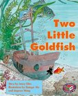 Two Little Goldfish (PM Storybooks) Level 16