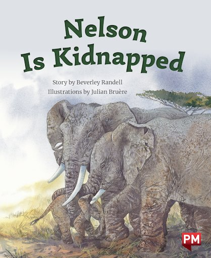 Nelson is Kidnapped (PM Storybooks) Level 23