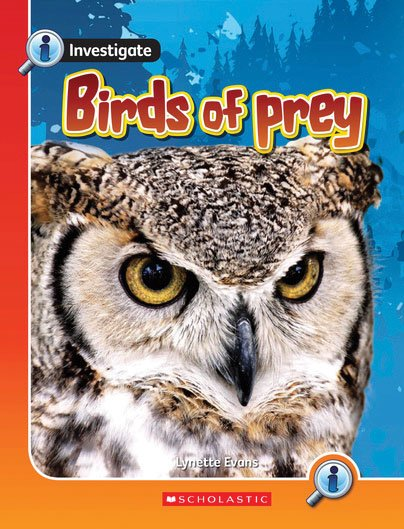Investigate: Birds of Prey x 6