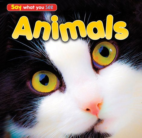 Say What You See: Animals