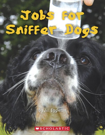 Jobs for Sniffer Dogs x 6