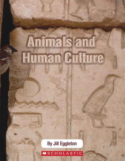 Connectors Ages 11+: Animals and Human Culture x 6
