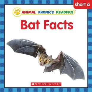 Animal Phonics Readers: Bat Facts