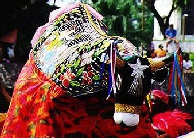 Bumba Meu Boi festival
