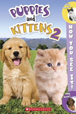 Now You See It! Puppies and Kittens 2