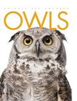 Animals Are Amazing: Owls