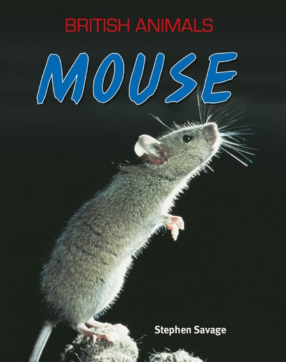 British Animals: Mouse