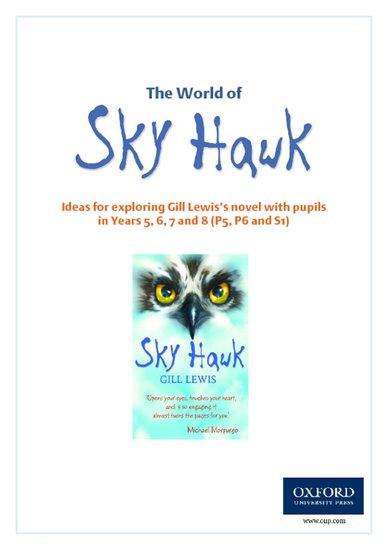 Sky Hawk Teachers' Notes
