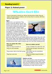 Whales fact file page 1 for level 6 (1 page)
