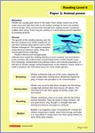 Whales fact file page 2 for level 6 (1 page)