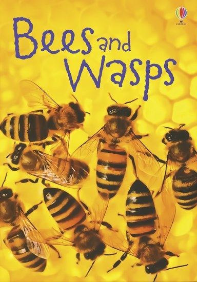 Usborne Beginners: Bees and Wasps