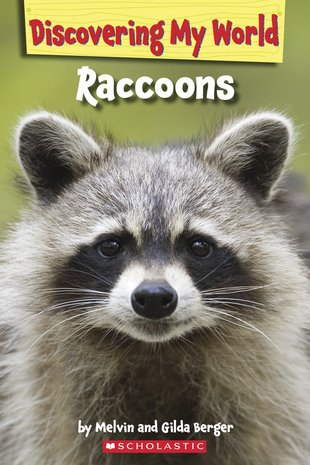 Discovering My World: Raccoons