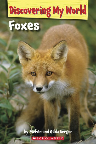 Discovering My World: Foxes