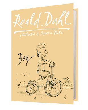 Boy: Tales of Childhood (Hardback)