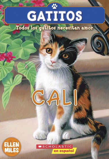 Gatitos Cali / Kitty Corner: Callie