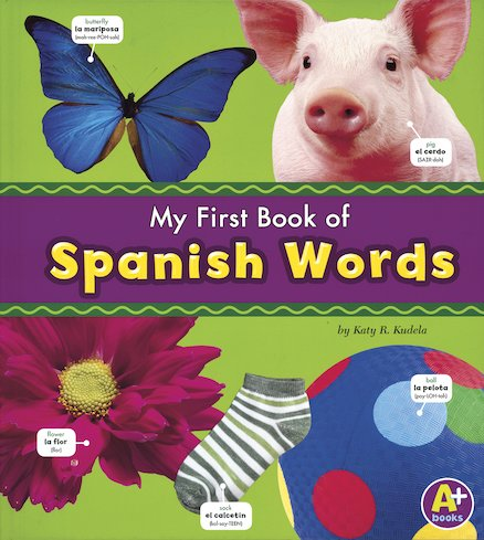 Mi primer libro de palabras en español / My First Book of Spanish Words
