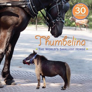 Thumbelina: The World's Smallest Horse