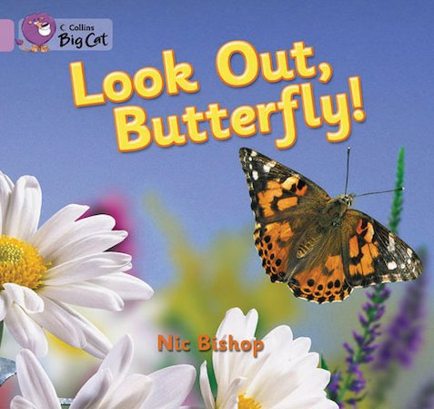 Look Out, Butterfly! (Book Band Lilac)