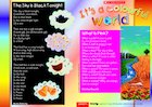 It's a colourful world – Guided reading leaflet