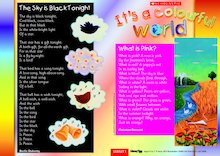 It's a colourful world - Guided reading leaflet