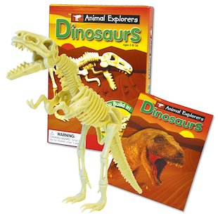 Dinosaur Building Kit