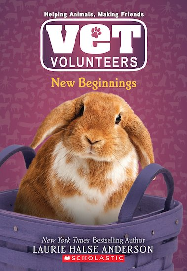Vet Volunteers: New Beginnings