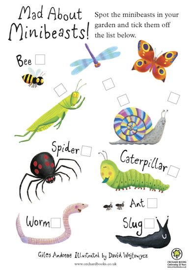 Mad About Minibeasts Activity Pack