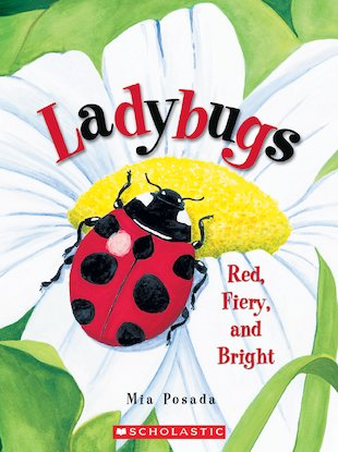 Ladybugs: Red, Fiery and Bright