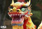 Chinese dragons slideshow