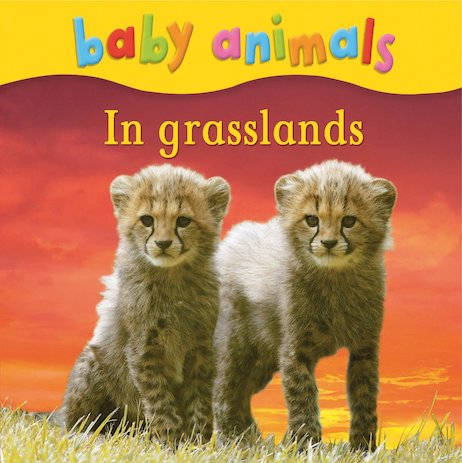 Baby Animals: In Grasslands