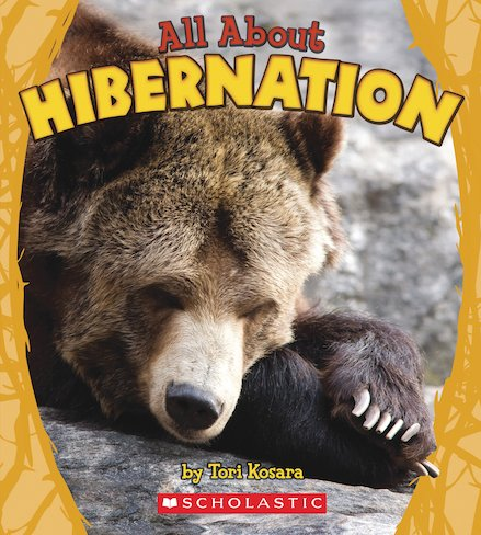 All About Hibernation
