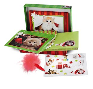 Christmas Kittens Stationery Box